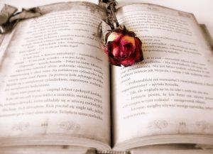 [ビブリ…][神保町…]Amazon日本の小説ランキング【2018年09月27日02時】