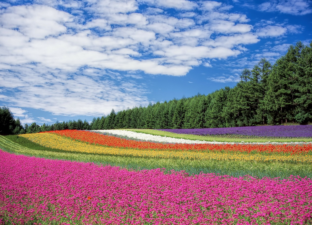 土を耕す人が報われる世の中になれ